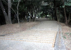 20111125_04.jpg