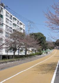 20120329_02.jpg