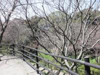 20120329_07.jpg