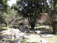 20120329_11.jpg