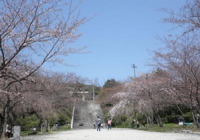 20120329_15.jpg