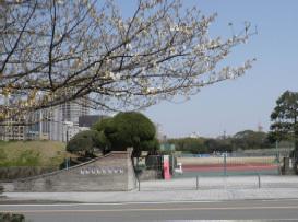 20120329_21.jpg