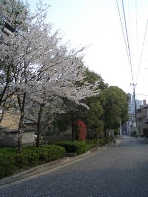 20120409_07.jpg